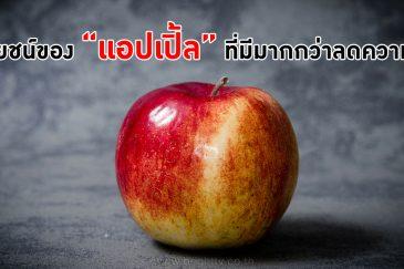 คุณประโยชน์ของแอปเปิ้ล