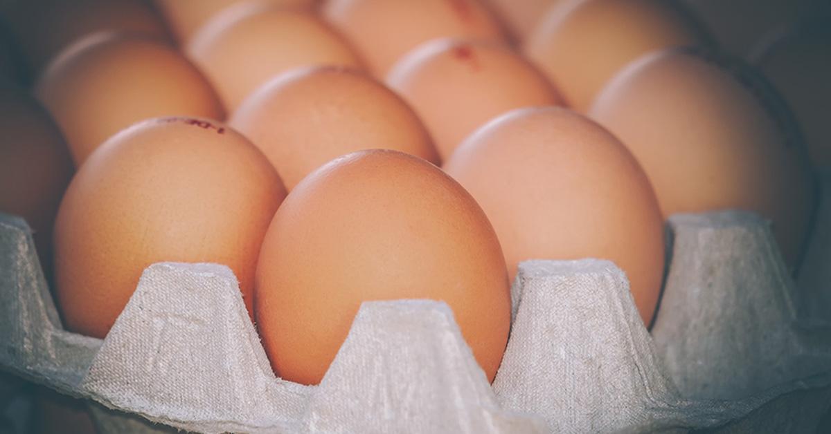 ราคาไข่ไก่