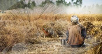 เงินเยียวยาเกษตรกร งวดที่2 ธ.ก.ส