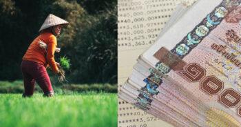 ตรวจสอบเกษตรกรเงินเยียวยาเกษตรกร