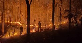 ช่วยไฟป่าเชียงดาว ปก