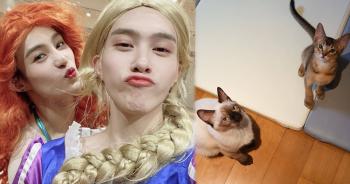 hendery-yangyang-act-like-tens-catsปก